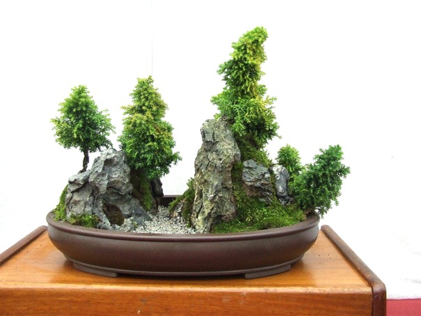 saikei_green_lawns_bonsai_saikei_demo_10.jpg